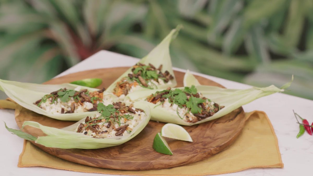 Chili Lime Cricket Elote Image