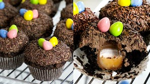 nest cupcakes.png