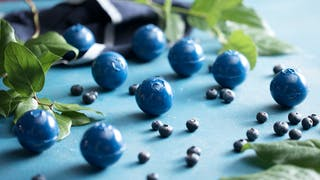 6d063213-1332_blueberrybombs_land1.jpg