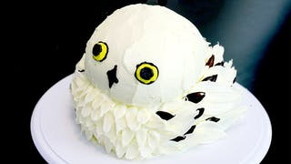 hedwig cake.png