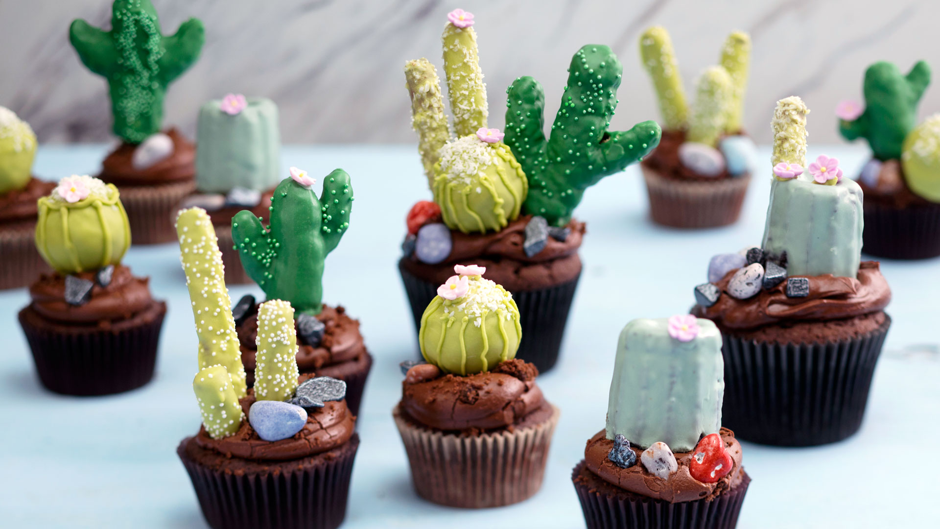 Chocolate Cactus Cupcakes 4 Ways Recipe Tastemade