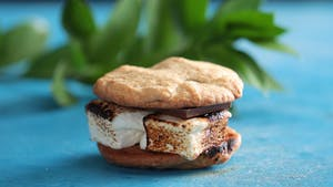 rocky-road-smores-cookie-sandwiches_l_thumb.png