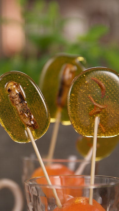 Bug Lollipops