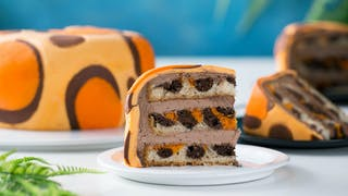 1575_LeopardPrintCake_Land.jpg