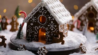 Ginger Bread House Landscape Still.jpg