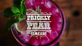 landscape-thumbnail-prickly-pear-limeade
