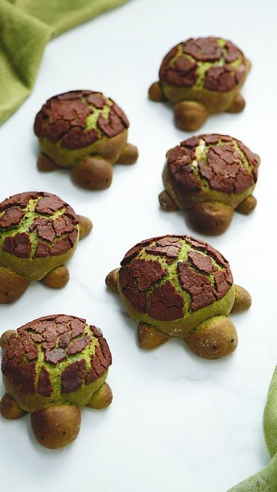 Match Milk Bread Turtles