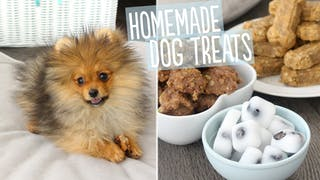 homemade-dog-treats_landscapeThumbnail_en.png