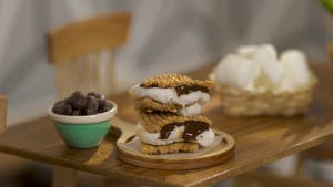 Tiny S'mores Image