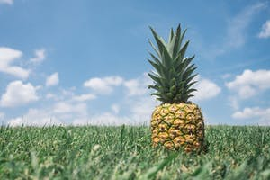 5-more-things-you-may-not-know-about-pineapples-hero